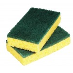 Scourer small